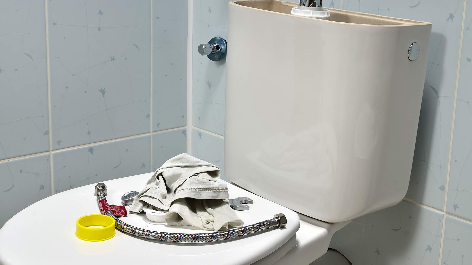 6 Things You Should Never Flush Down Your Toilet
