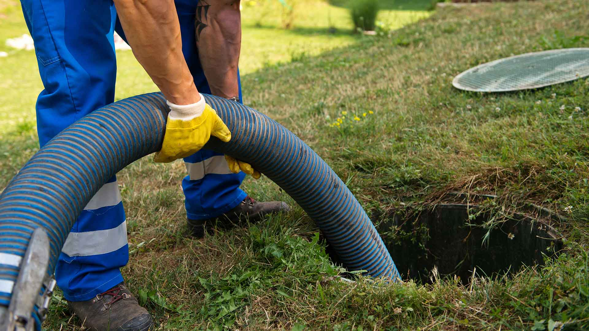 Why Your Drain Field Needs Maintenance