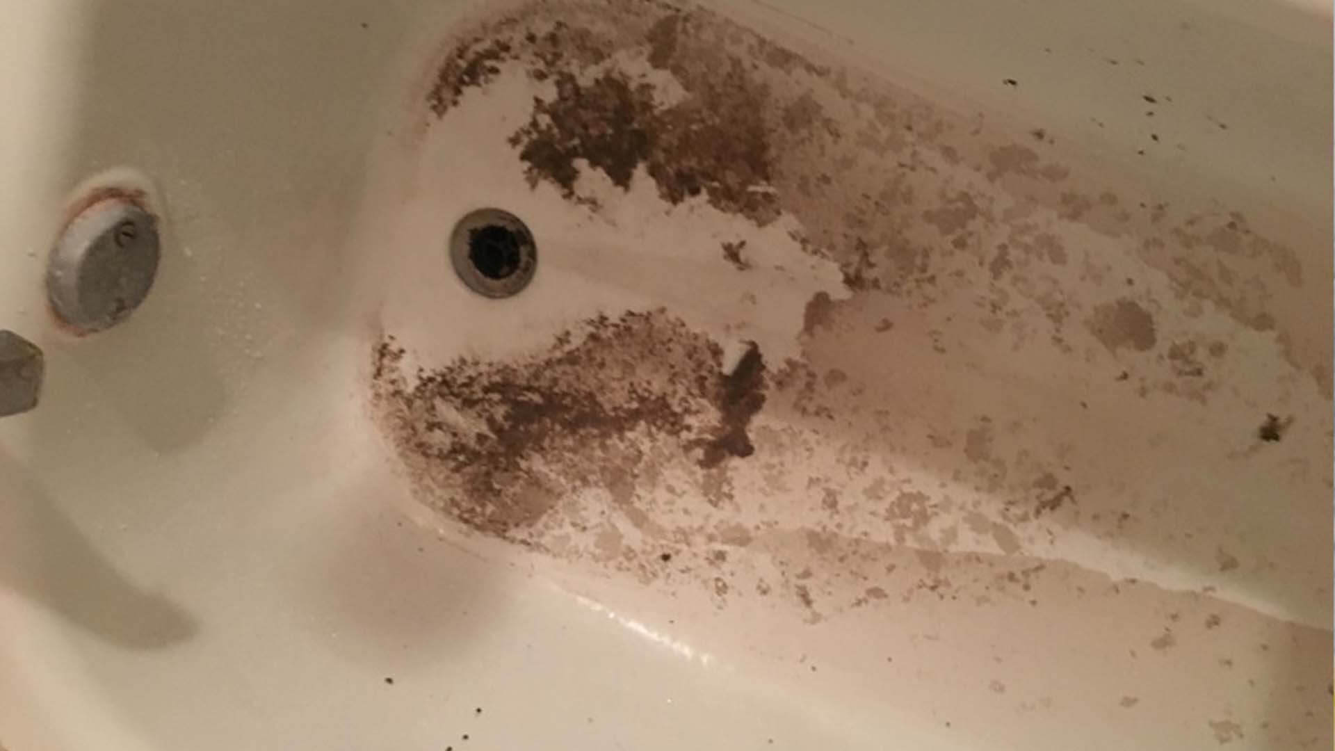 Sewage backing up into bathtub at home in Lakeland, FL.
